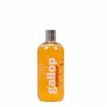 262 CARR & DAY & MARTIN CANTER - Gallop Colour Shampoo Chestnut 500ml