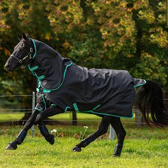 HORSEWARE Horses Rugs Amigo® Hero 900 Plus / AAMPT2