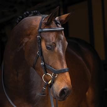 "HORSEWARE  ""RAMBO MICKLEM Diamante "" bridle"