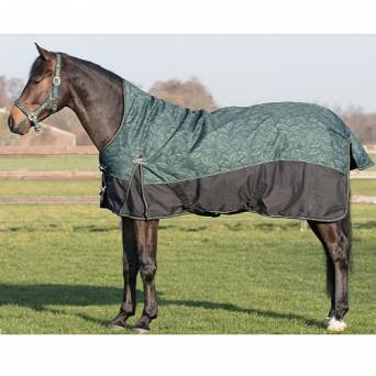 QHP Turnout rug half neck 300gr, collection Autumn - Winter 2019 / 6244