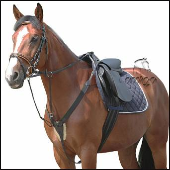 22 DAW-MAG Elastic/leather breastplate with running martingale