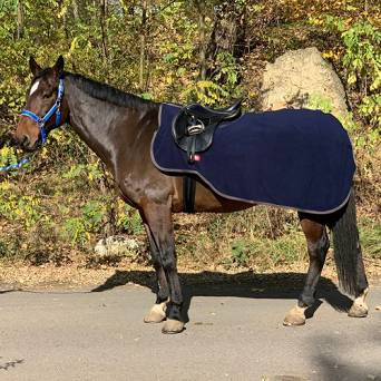 BR Exercise rug PREMIERE - collection Autumn - Winter2019 / 393209