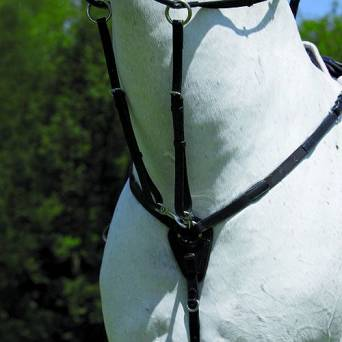 WALDHAUSEN Elastic X-LINE breastplate with running martingale/ 95623