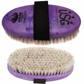 HAAS Brush with natural bristles / 30776