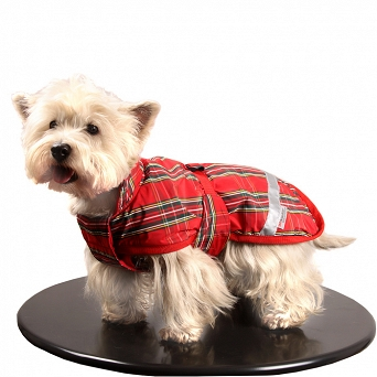 0231B STALLION Polyester and fleece jacket GLASGOW for small dog