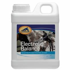 Icon_cavalor_electrolyte5000