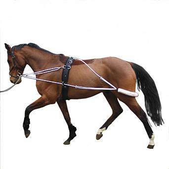 1715 STALLION-L Training system