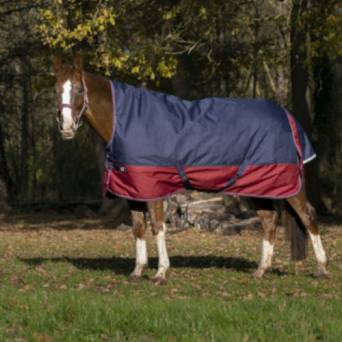 Turnout rug with high neck EQUI-THEME TYREX 1200D / 400931