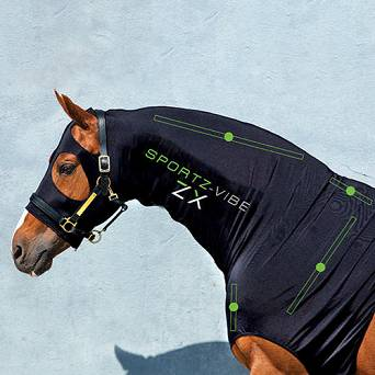 HORSEWARE Base Layer SPORTZ-VIBE® ZX / ADHK8V