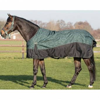 QHP Turnout rug 150gr, collection Autumn - Winter 2019 / 6241