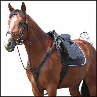 21 DAW-MAG Elastic breastplate with running martingale
