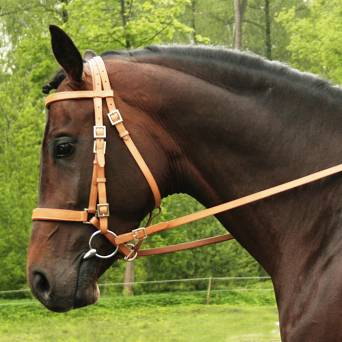 38 DAW-MAG Endurance bridle/headcollar + leather reins with stoppers